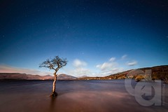 Moon lit Millarochy bay (Ayrshire & Arran Photo (Richard Cottrell)) Tags: longexposure nightphotography sky water night stars scotland skies trossachs lochlomond millarochy