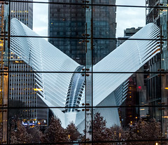 New WTC Transportation, NYC, viewed from Brookfield Place (nianci pan) Tags: nyc urban newyork geometric glass pattern geometry manhattan line trainstation pan curve  platforma   brookfieldplace nianci wtctransportation