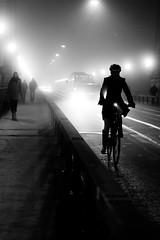 It's all about the (head)light (tom.leuzi) Tags: 50mm bw bern berne bike bokeh canoneos6d city dof fahrrad leute menschen nacht nebel night personen sigma50mmf14dghsmart schatten schweiz sigmaart switzerland velo backlit bicycle blackandwhite bus car f14 fog light mist outoffocus people schwarzweiss shadow street urban woman kornhausbrücke