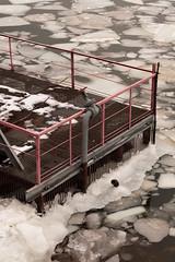 GSZ-1368 (g.zakharova) Tags: moscow megalopolis winter nikon d750 tamron 2875mm
