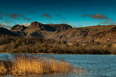 Today in the Lakes (Looking over Elterwater towards the Langdale Pikes) (Explored 1/1/2017). (Harvey Smith) Tags: english lake district countrysidewalks 2017 landscape winter harvey smith photography 2016 cumbria northern england northwest landscapephotography lakes englishlakedistrict harveysmithphotography2016 lakedistrict northernengland elterwater newyearsday nyd thelangdales