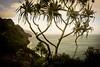 Copy of Kauai b&w28 (chiarina2016) Tags: kauai hawaii island beach monotone blackandwhite chiarinaloggia stormyseas waves trails hiking surf kalalautrail trail hike napali coast
