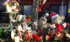 99/116 Nocturnal: 2 Owls, Raccoon & Hedgehog (Bella Lisa) Tags: 116picturesin201 raccoon possum hedgehog bear xmas decorations owls