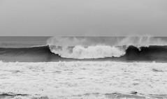 IMG_2882.jpg (sfanshier) Tags: winterwaves beach torreypinesstatebeach ocean torreypinesstatepark waves