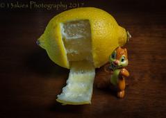 Lemon House (HMM) (13skies) Tags: lemonhouse squirrel lemon doorway peel apeeling chew eat digging macromondays hmm happymacromonday happymacromondays itsapeelingtome macro macroscopic close small sonyalpha100