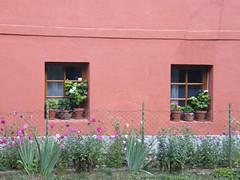 Pula, Virágos ablakok (ossian71) Tags: magyarország hungary pula épület building ablak window