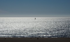 4220ex  P900  near the Santa Monica Pier (jjjj56cp) Tags: ca california californiasun santamonicastatebeach santamonica santamonicapier sand gleaming sun sunny sunshine boat sailboat horizon blue p900 jennypansing pacific pacificocean ocean ripples glistening sparkle sparkling