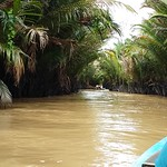 A short video of the boat ahead and the pygmy palms thumbnail