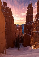 Morning Matinee (Darkness of Light) Tags: bryce canyon national park navajo trail wall street hoodoos switchbacks utah morning light sunrise sunset point sony a7rii gm