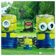 safe_image (2) (locksmithbatavia) Tags: minions batavia ny 585 716 kids cute creative