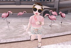 Can I be a Flamingo? (Candy Rinq [mabelcnls Resident]) Tags: little miss flamingo fashion style instore flower crown lashes sandals grow up be like them cute toddleedoo toddler blogger second life secondlife candy