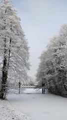 Winter beauty (l-vandervegt) Tags: 2017 nederland netherlands holland niederlande paysbas overijssel deventer winter landschap landscape snow whit wit