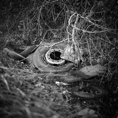 Ditch (Barnaby Nutt) Tags: fujineopanacros yashica ilfotec hc