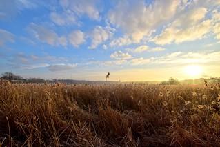 Sunrise at frozen Fleet Pond