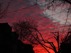 Sailor's Warning (willceau) Tags: sky red sunrise blood philadelphia