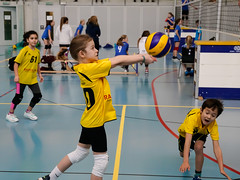 170129_VBTMU13_3_005 (HESCphoto) Tags: volleyball therwil vbtherwil mini damen mu13 99ersporthalle turnier saison1617