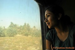 Train Travel (Click Therapy) Tags: travel woman holiday window face closeup train lost photography photo solitude looking egypt picture photographers pic calm traveller pictureoftheday pictureperfect ilovephotography photooftheday picoftheday trainwindow trainride perfectpicture photographylovers photographysouls clicktherapy