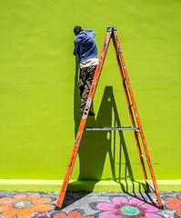 SFO Streets: Urban arts [Explored] (_Franck Michel_) Tags: flower fleur painting artist peinture ladder stepladder échelle escabeau