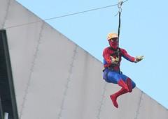 Tijdelijke #sensatie & kicks voor #evenementen. Boost je exposure, marketing & evenement http://j.mp/1JuKmjs (Skywalker Adventure Builders) Tags: design high construction course ropes zipline zipwire skywalker hochseilgarten waldseilpark klimpark klimbos