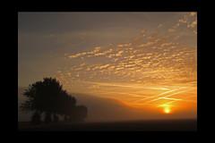 sunrise (feefers3) Tags: autumn summer mist fall fog sunrise landscape dawn scotland indian september falkirk fogbank skinflats