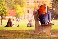 Autumn (Elliotphotos) Tags: ohio red colors state elliot redhair oval universitythe gilfix colorautumn elliotphotos elliotgilfix ohiouniversityosuohio universitytheohio statebenchbencheschairchairsthe ovalthetreetreesautumnautumn