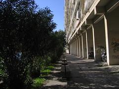 IMG_8693 (T.J. Jursky) Tags: canon europe croatia split adriatic hajduk dalmatia spinut tonkojursky