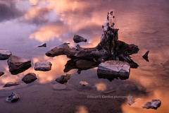 Stump, Rock & Reflection (chasingthelight10) Tags: travel mist canada photography landscapes events places things banffnationalpark canadianrockies vermilionlake