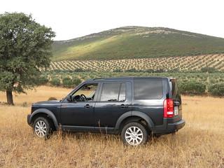 Spain Ibex Hunt & Driven Partridge Hunts 24