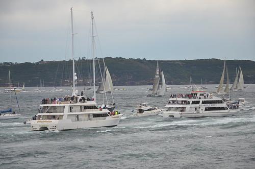 314 spectator craft, 2010 Sydney-Hobart race, Laings Pt., Watsons Bay