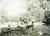 GIM-12-11-012f (dbagder) Tags: norway hager gutter nor kristiansand leker piker vestagder gyngehester kjerrer