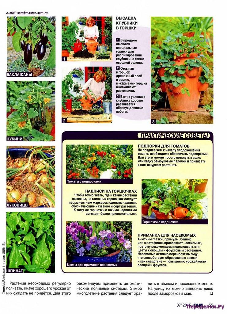 Садовые секреты
