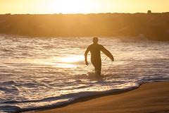Foam Blanket (haddartist) Tags: ocean morning light beach silhouette backlight sunrise dawn coast virginia sand rocks surf surfer jetty highlights coastal oceanside foam surfboard ripples wade rippled virginiabeach silhouetted foamy wetsuit wading oceanfront firststreet
