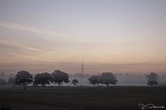 (sns.) Tags: fog sunrise am birmingham