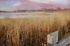 Sensations (floralgal) Tags: landscape ryenewyork newyorklandscape westchestercountynewyork edithreadsanctuaryryenewyork duskinryenewyork
