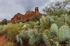 DSC_9898 (RxGus) Tags: vacation arizona unitedstates grandcanyon sedona rafting year2 gustafson