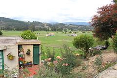 "Casas en el Pantano de Vargas • <a style=""font-size:0.8em;"" href=""http://www.flickr.com/photos/78328875@N05/23767147276/"" target=""_blank"">View on Flickr</a>"