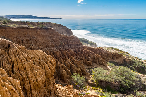 Thumbnail from Torrey Pines State Natural Reserve
