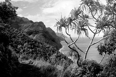 Copy of Kauai b&w27-2 (chiarina2016) Tags: kauai hawaii island beach monotone blackandwhite chiarinaloggia stormyseas waves trails hiking surf kalalautrail trail hike napali coast