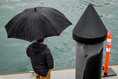 Aquabus stop (johnjackson808) Tags: falsecreek fujifilmxt1 granvilleisland vancouver dock harbour people pier rain streetphotography umbrella