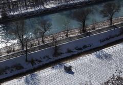 le long du Rhône... (bulbocode909) Tags: valais suisse branson fully rhône fleuves rivières arbres vignes guérites hiver neige nature routes bleu
