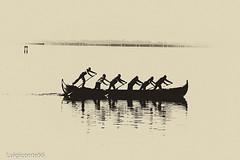 insieme (conteluigi66) Tags: remi voga vogatori barca laguna venezia silhouette ombra luigiconte skancheli