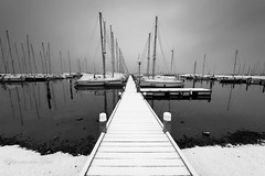Black and white world (Ellen van den Doel) Tags: februari netherlands winter nederland outdoor sailboat cold sneeuw herkingen 2017 trotsopflakkee harbor white black boat snow goereeoverfklakkee polder ice zuidholland nl