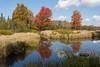 Autumn Reflections in Canaan Valley (Ken Krach Photography) Tags: westvirginia canaanvalley
