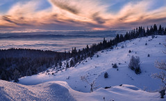 Winter beach (coagator) Tags: winter beach fog mist tree trees mountain zlatar forest sunset clouds snow serbia