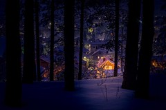 Feel the magic👌👌👌❄️❗️🔝 Winter Tree Snow Illuminated Forest Night Nature No People Cold Temperature Outdoors Architecture EyeEm Best Shots Copy Space Freedom Cold Days Nopeople DSLR Explore Scenics Tra (Nick Pandev) Tags: winter tree snow illuminated forest night nature nopeople coldtemperature outdoors architecture eyeembestshots copyspace freedom colddays dslr explore scenics tranquility tranquilscene romantic
