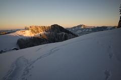 sunrise @ Zürcher Oberland (Toni_V) Tags: m2402893 rangefinder messsucher leica leicam mp typ240 28mm elmaritm12828asph schnee schneeschuhwanderung schneeschuhlaufen fischenthal zürcheroberland sunrise sonnenaufgang winter hauteroutetösstal sky zurich zürich switzerland schweiz suisse svizzera svizra europe snow snowshoeing ©toniv 2017 170121