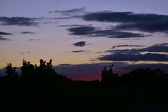 Into the night (Dreaming of the Sea) Tags: nikon d7200 dusk tamronsp2470mmf28divcusd tamron2470mm clouds twilight trees bluesky redsunset sunset january 2017 bundaberg 500v20f 1000v40f 1500v60f