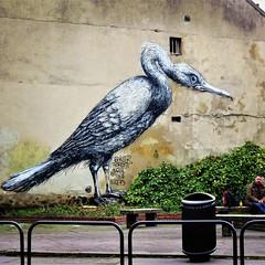 I love that #bird / #Art by #ROA - #paris #streetart #graffiti #urbanart #graffitiart #urbanart_daily #graffitiart_daily #streetarteverywhere #streetart_daily #wallart #mural #ilovestreetart #igersstreetart #streetartparis #msaparis #vitrysurseine #vitrys (Ferdinand 'Ferre' Feys) Tags: ifttt instagram roa paris france streetart artdelarue graffitiart graffiti graff urbanart urbanarte arteurbano ferdinandfeys