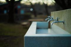 twilight (N.sino) Tags: m9 summiluxm50mm faucet twilight 蛇口 夕暮れ 神代植物公園