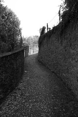 Going for a Walk: Reaching the Light (will.mc144) Tags: light bw italy como beauty walking moving search looking hiking path walk tunnel collection goingforawalk views bellagio searching